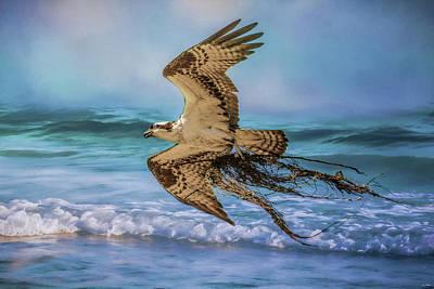 Photograph - Treasures For The Nest Osprey Art by Jai Johnson