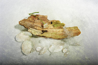 Photograph - Treasures From The Beach by Randi Grace Nilsberg