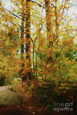 Split Rail Fence Digital Art - Treasures Of Autumn by Cheryl Rose