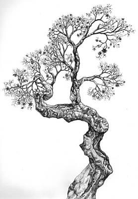 Digital Art - Tree 14 by Brian Kirchner