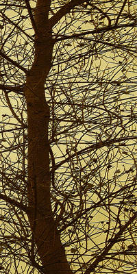 Photograph - Tree Abstract In Yellow No 3 by Ben and Raisa Gertsberg