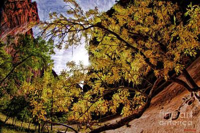Photograph - Tree Along Zion Riverside Walk by Blake Richards