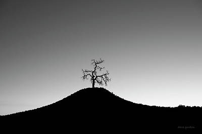 Tree And Hill Bw Art Print by David Gordon
