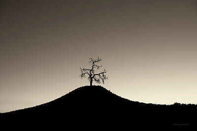 Photograph - Tree And Hill  Montage Toned by David Gordon