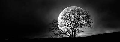 Tree And Moon Art Print by Bob Orsillo