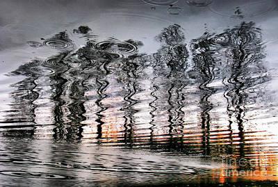 Photograph - Tree And Reflection by Daliana Pacuraru