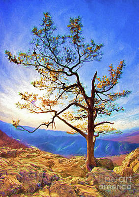 Art Print featuring the painting Tree And Rocks In The Blue Ridge Near Sunset Ap by Dan Carmichael