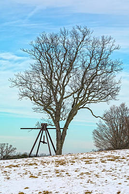 Photograph - Tree And Sculpture In Winter by Angelo Marcialis