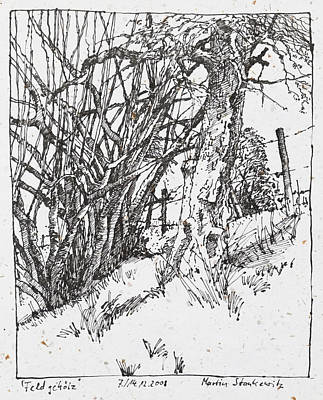 Drawing - Tree And Shrubs Ink Drawing by Martin Stankewitz