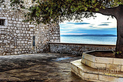 Photograph - Tree And Stone Wall Frame Adriatic, Rab, Croatia by Global Light Photography - Nicole Leffer