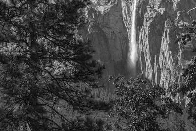 Photograph - Tree And Waterfall In Yosemite Black And White  by John McGraw
