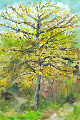 Autumn Painting - Tree At Mccrillis Gardens by Lin-Lin Mao