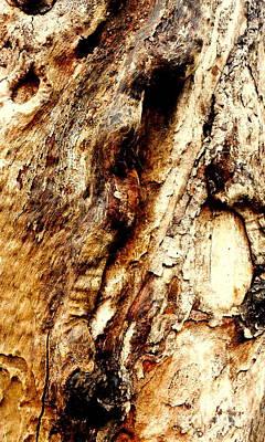 Photograph - Tree Bark Series  - Knobs #3 by Lexa Harpell