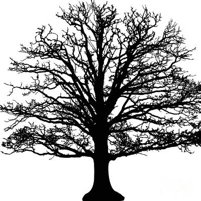 Painting - Tree Black And White by Saundra Myles