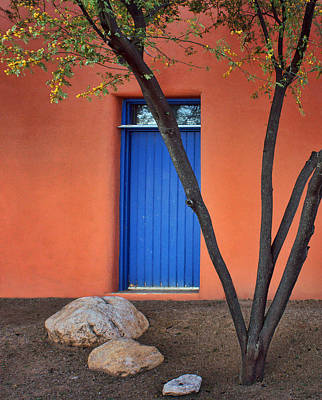 Photograph - Tree - Blue Door - Barrio Historico - Tucson by Nikolyn McDonald