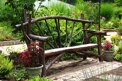 Photograph - Tree Branch Bench by Allen Nice-Webb