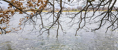 Photograph - Tree Branches Over Lake by Lynn Hansen
