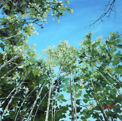 Painting - Tree Canopy by Judy Bradley