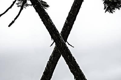Tree Crossing X Art Print