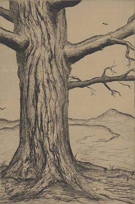 Drawing - Tree by Erik Paul