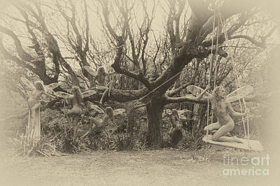 Photograph - Tree Fairy by Clayton Bastiani