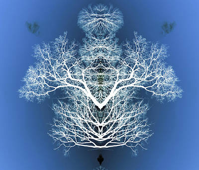 Digital Art - Tree Flip 3 by Steve Ball