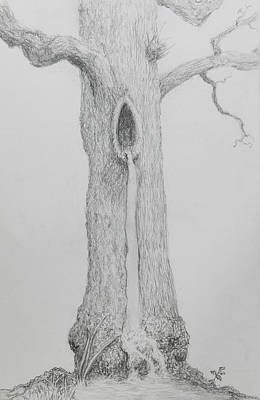 Drawing - Tree Flow by Kathryn Bell