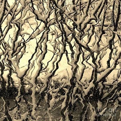 Photograph - Tree Frenzy by Rosanne Licciardi