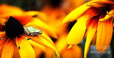 Digital Art - Tree Frog And Flowers by Nick Gustafson