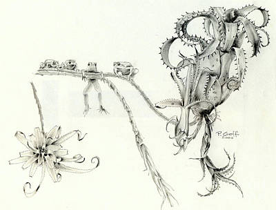 Drawing - Tree Frog Hangout by Penrith Goff