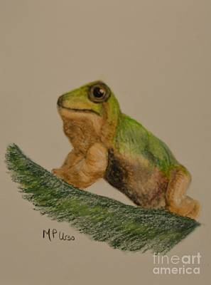 Pastel - Tree Frog by Maria Urso