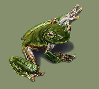 Tree Frog  Art Print by Owen Bell