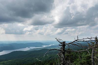 Photograph - Mountain Drama - Turbulent Sky And Broken Pines by Georgia Mizuleva