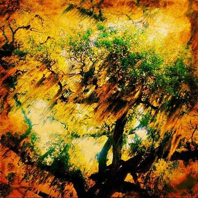 #tree #green #yellow #colourful #sc Art Print