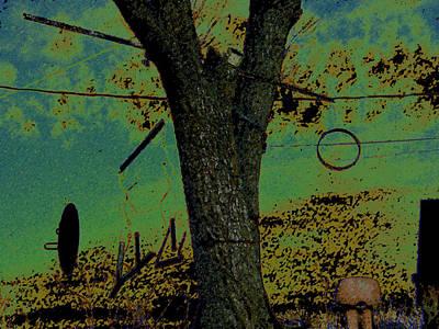 Tree Hangings Art Print by Lenore Senior