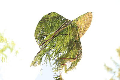 Tree Hat Art Print