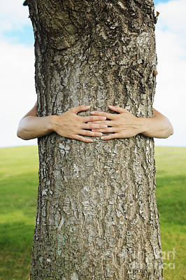Tree Hugger 1 Art Print by Brandon Tabiolo - Printscapes