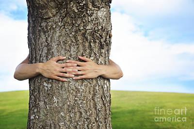 Tree Hugger 2 Art Print by Brandon Tabiolo - Printscapes