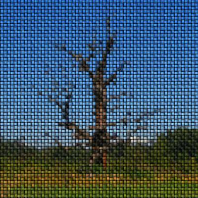 Roaring Red - Tree image knit by Miroslav Nemecek