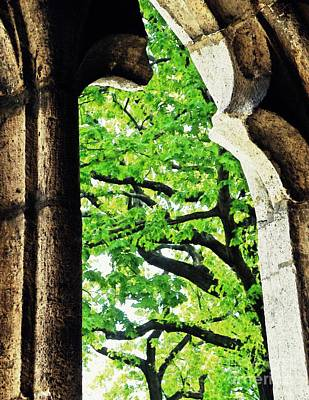 Tree In A Medieval Frame Art Print by Sarah Loft