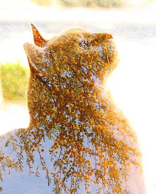 Tree In Cat Art Print