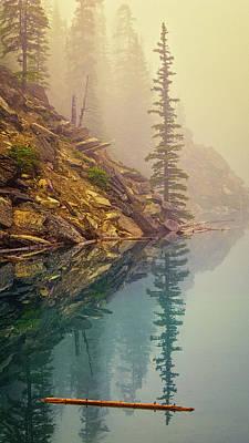 Alberta Photograph - Tree In The Fog by Joan Carroll