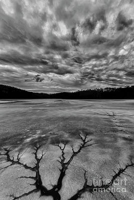 Photograph - Tree In Ice Black And White by Thomas R Fletcher