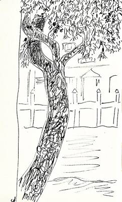 Drawing - Pine Tree In Lanjaron by Chani Demuijlder