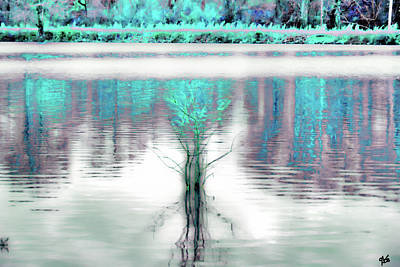 Photograph - Tree In Pond Abstract by Gina O'Brien