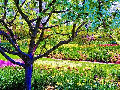 Tree In Spring Art Print
