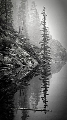 Rockies Photograph - Tree In The Fog Bw by Joan Carroll