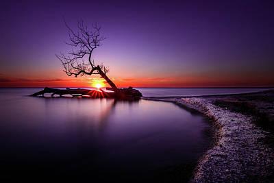 Southwick Photograph - Tree In The Lake - Henderson, Ny. Lake Ontario Southwick Beach Sunset Sunrise by Bradley P Smith