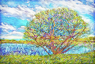Digital Art - Tree Lake Momentum - Boulder County Colorado by Joel Bruce Wallach