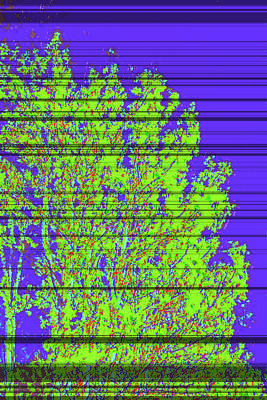 Tree Leaves D4 Art Print by Modified Image
